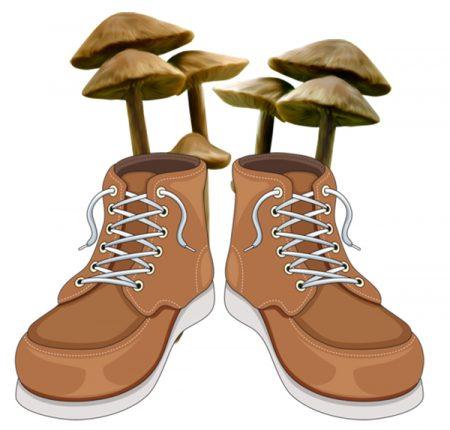 Приборы для дезинфекции обуви от грибка