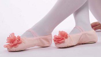 Чем отличаются балетки от чешек, рекомендации по выбору